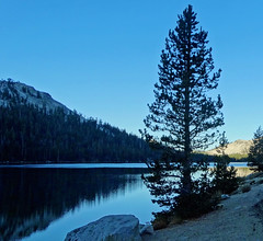 Sunrise on Tenaya Lake, Yosemite NP 10-17 (inkknife_2000 (9.5 million views)) Tags: easternsierranevada yosemitenationalpark california usa landscapes mountains dgrahamphoto forests trees tenayalake granite granitemountains waterreflection sunrise silhouette firstlight