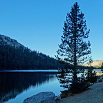 Sunrise on Tenaya Lake, Yosemite NP 10-17 thumbnail