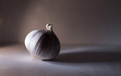 Sidelit (Helena Johansson 71) Tags: macromondays sidelit garlic food eatable vegetable portrait macro nikond5500 d5500 nikon fotoarte object everydayobject