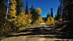 The Road Less Taken (The VIKINGS are Coming!) Tags: autumn colors dirt bare road beautiful alpine mountains
