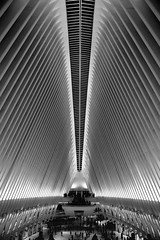 The Oculus (Eric.Burniche) Tags: nyc blackandwhite bnw bw monochrome worldtradecenter theoculus newyorkcity newyorknewyork ny city architecture