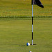 Golf Hole with Ball and Flag