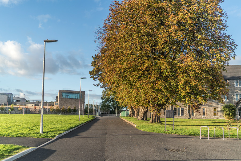 VISIT TO THE DIT CAMPUS AND THE GRANGEGORMAN QUARTER [5 OCTOBER 2017]-133168