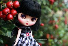 Big berries (pure_embers) Tags: pure embers middie blythe doll dolls photography uk laura england girl cute little dee pureembers nina embersnina berries