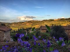 @borghettobb view! Amazing landscape! 👌👍 #like #follow #Borghetto #Montalcino #tuscany #italy #travel #discpver #landscape #nature #enjoy 😊 (borghettob) Tags: like follow borghetto montalcino tuscany italy travel discpver landscape nature enjoy