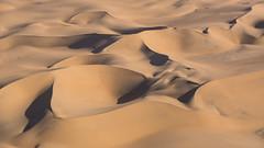 The Namib (GioRetti) Tags: namibia desert namib dunes sand orange landscape africa sourhernafrica flickrtravelaward nikonflickraward