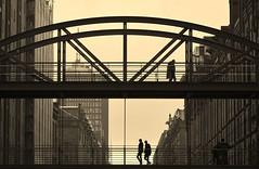 #bridge #sunset #silhouette #contrast #speicherstadt #warehouses #redbrick #facade #hafencity #hamburg #germany #igershamburg #igersgermany #deutschland #trip #travel #summerholiday #moinmoin #wunderbar #behappy (chiaravecchione) Tags: moinmoin trip igershamburg warehouses silhouette redbrick bridge hafencity behappy igersgermany deutschland speicherstadt contrast wunderbar hamburg summerholiday facade sunset germany travel