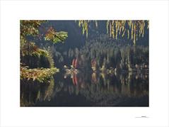 Ödensee (E. Pardo) Tags: ödensee see lago lake otoño autumn herbst colores colors farben reflections reflejos spiegelungen wasser water agua luz licht light ausseerland salzkammergut steiermark austria paisajes landscape landschaft