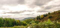 _DSC073777733222344-2342 (SteveKenilworth2014) Tags: terrier lane mountains mountain cliff cliffs clouds nikon d5300 18105mm lightroom photoshop dog lurcher polarizer panorama stitch bw