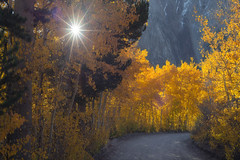 Look at the star, Look how it shine for you... (jojo (imagesofdream)) Tags: fall eastern sierra california