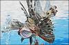 Dahab 2017 - The Bedouin Divers 03 (Markus Lüske) Tags: egypt ägypten aegypten sinai dahab wüste desert desierto bedouin beduine diving diver tauchen taucher graffiti graffito mural muralha wandmalerei art arte kunst malen meer sea redsea red lüske lueske