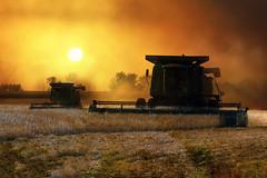 DSC_0017 (peterstratmoen) Tags: farm combine minnesota sunset fields nikonflickraward