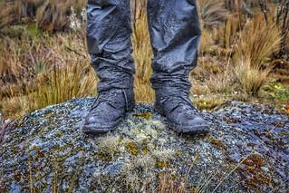 Explorer Boots (Cajas National Park, Ecuador. Gustavo Thomas © 2017)