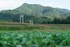 20171024ブラリ秋穂・山陽小野田-9818 (Gansan00) Tags: ilce7rm2 sony japan autumn landscape 日本 ブラリ旅 10月 yamaguchi 山口県 α7rⅱ 秋