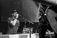 2017_10_27 Bosuil Battle of the tributebandsLIM_6421-Full Nelson  Limp Bizkit Tribute Johan Horst-WEB