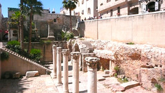 Jerusalem's Cardo. (davidezartz) Tags: jerusalem cardo jerusalemscardo paved secondcentury main thoroughfare meetingplace israel leica leicadlux3 cloudless sky pillars ruins people staircase stairs buildings windows stones jerusalemstone moss railings trees palmtrees blue white green yellow brown grey black red purple sun sunshine shadows arch bushes leaves trunks architecture limestone wall pink steps holy holycity holycityofjerusalem shutters paving thegalaxy flickrestrellas flickrclickx thisphotorocks light residents gold