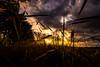 Sunset (betadecay2000) Tags: sunset powerline sonnenuntergang himmel sky heaven sonne abend abendstimmung kornfeld steinfurt neuenkirchen kreis nrw münsterland germany deutschland stromleitung line overhead power stimmung kontrast wolken wetter weather weer meteo land county countyside 10 strommast feld