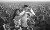 P&W (16 de 71) (Grand Prisma Fotografia) Tags: casamento amor sessão romântico girassol