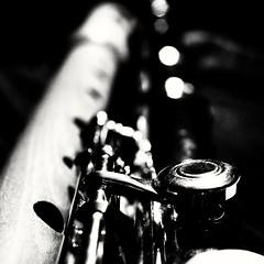 Member's choise: Musical Instrument - for Macro Mondays (annesjoberg) Tags: flute memberschoicemusicalinstrument macromondays macro monochrome