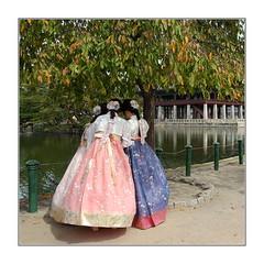 A l'ombre des jeunes filles en fleurs / Séoul (PtiteArvine) Tags: jeunesfilles arbre hanbok seoul couleurs habittraditionnel corée coréennes parc romantisme complicité automne