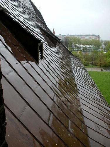 roof_konigsberger_dom ©  serge.zykov