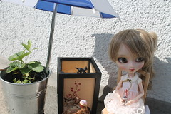 Disfrutando el sol en otoño... (Ninotpetrificat) Tags: puppe pullip groove japantoys japandoll doll toys cute kawaii hobby rement muñeca