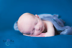 Newborn posing session