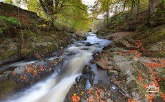 River Garry, Killiecrankie (Daniel Giza) Tags: river garry autumn colours water waterfall tree pass killecrankie landscape scotland perthshire canon 50d sigma 1020 forest rock stream breath taking landscapes breathtakinglandscapes