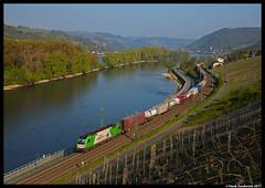 Wiener Lokalbahnen Cargo 1216 954, Lorch am Rhein 21-04-2017 (Henk Zwoferink) Tags: lorch hessen duitsland de rhein wlc 1216 hödlmayr henk zwoferink siemens taurus es64u4 954 am rechterrhein