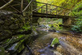 Caramanico - Ponte nel Bosco