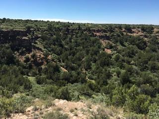Texas Free Range Hunt – Palo Dura Canyon 20