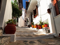 Skopelos street (jeff.dugmore) Tags: skopelos greece greekislands sporades europe travel street path steps pots flowerpot walls outdoors outside olympus