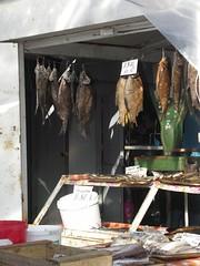 Oleksandriia 2006 - 096: Pesce essiccato e/o affumicato al mercato di Oleksandriia (fiorenzo-dellutri) Tags: pesce alimenti ukraine oleksandriia mercato essiccato affumicato