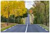 Ruban de bitume (Pascale_seg) Tags: meuse lorraine france road automne autumn orange sky ciel nuages clouds nikon trees jaune yellox save earth