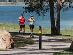 "The Avanti Plus Long and Short Course Duathlon-Lake Tinaroo • <a style=""font-size:0.8em;"" href=""http://www.flickr.com/photos/146187037@N03/36894419233/"" target=""_blank"">View on Flickr</a>"