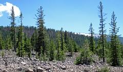 Chaos Jumbles Landslide (upper Holocene; Lassen Volcano National Park, California, USA) 11 (James St. John) Tags: chaos jumbles landslide avalanche deposit lassen volcano volcanic national park california rhyodacite lava rock rocks