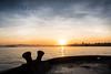Sunrise over San Francisco (Alberto Vanoli) Tags: map color nature seashells sunsetsunrise manmade photo port sea bayarea