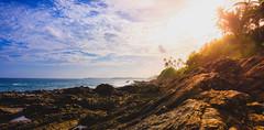 Sunset (dkphotographs) Tags: srilanka beautiful blue coast landscape ocean red sea seaside seascape shore trees sun sunset sunlight sunsetoverthesea sundown water clouds evening sky south sonyalpha6000 unawatuna tangalle