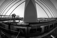 on the bridge / nothing fishy here (Özgür Gürgey) Tags: 12mm 2017 bw d750 goldenhorn haliç nikon samyang architecture bridge fisheye grainy lines street subway vignette istanbul car