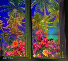 Tropical View (brillianthues) Tags: palm trees tropical flowers nature window