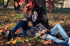 Red Leaves (*Ryuugan*) Tags: dollclans kien iplehouse leonard bjd doll abjd