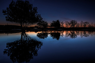 Reflection of trees in a pond at night