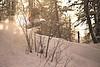 _MG_5604 (St Wi) Tags: snowboard snowboarding freeride freeriding rossignol nitro snow pow powder skiing offpiste backcountry austria alps salzburg pinzgau zauchensee zellamsee salzburgerland onebigpark kitzsteinhorn kaprun badgastein gastein jonessnowboards winter österreich schnee deep fresh rock cliff jump hike bootpacking splitboarding splitboard burton burtonsnowboards