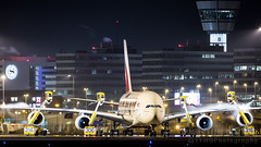 A6-EEQ (tynophotography) Tags: ams eham schiphol amsterdam airport wildlife livery nightshot deicing emirates airlines a380 a388 a380800 airbus beacon
