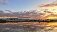 Beautiful View (http://fineartamerica.com/profiles/robert-bales.ht) Tags: forupload freshwater gemcounty haybales idaho people photo places projects states sunsetorsunrise reflections sunset sunrise goldentones lake pond emmett weedscattails layeredtones fishing silhouette spectacular magnificent peaceful serene surreal sublime spiritual inspiring inspirational evening relaxing treasurevalley emmettvalley usa panoramic pacificnorthwest blue trees twilight wow dramatic tree emotion airportpond idahophotography sunrays sky water yellow robertbales sawyer greetingcard afterglow
