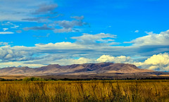 Squaw Butte From The West (http://fineartamerica.com/profiles/robert-bales.ht) Tags: fineart flickr photouploads gemcounty idaho mountain emmett sweet storm squawbutte farm landscape rollinghills scenic idahophotography treasurevalley robertbales clouds spring emmettvalley emmettphotography trees sceniclandscapephotography thebutte haybales canonshooter beautiful sensational awesome magnificent peaceful surreal sublime magical spiritual inspiring inspirational wow town butte gem