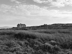 Lonely house (Nelleke C) Tags: 2016 inisleacan inishlackan abandoned connemara countygalway eiland holiday house huis ierland ireland island vakantie