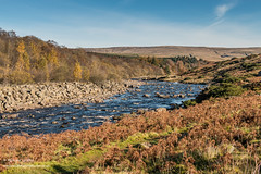 River Tees downstream from Blea Beck, Autumn (Richard Laidler) Tags: aonb area autumn autumncolour autumncolours autumntints beauty bleabeck blue bluesky bubbles color colors colour colourful colours county countydurham distance durham fall footpath gold long longdistance moor moorland moors natural north northeastengland northpenninesaonb outstanding pennine pennineway pennines river riverbank riverbanks rock rocks sky splash splashing sun sunny sunshine tees teesdale tints upper upperteesdale way yellow