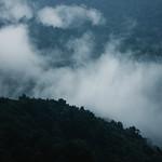 Misty moods thumbnail