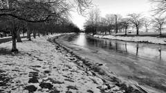 (mahler9) Tags: january 2013 jaym mahler9 panasonic lumix winter charlesriver boston esplanade bw monochrome blackwhite